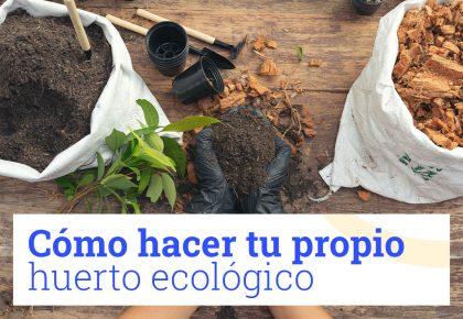 Propio huerto ecológico EnLavapiés